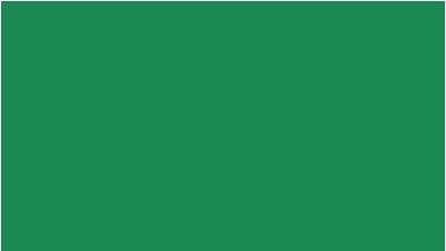 Oracal 751 619 Gloss Traffic Green 1 m (Дорожно-зеленая глянцевая пленка)