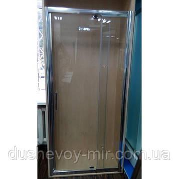 Душевая дверь Atlantis PF-15-2 100-110х190