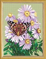 Страмин для вышивки крестиком или бисером ''Бабочка на цветах покровки'