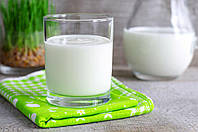 АЦИДОФИЛИН(закваска на 3л молока), фото 1