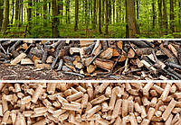 Біопаливо Ліс-1л, фото 1