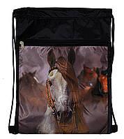 Рюкзак сумка для сменной обуви на шнурках черный с карманом и фото Лошадь Vombato 1-7836, фото 1