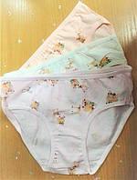 Трусики  для девочки  2-3 года  Donella