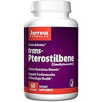 Ресвератрол (Resveratrol), Jarrow Formulas, 50 мг, 60  капсул