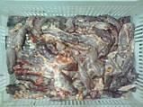 Легке яловиче, субпродукти яловичі, фото 5
