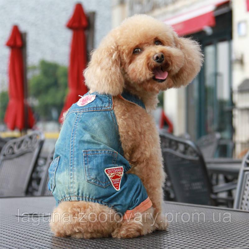 Джинси для собак, колір - денім, розмір 2XL