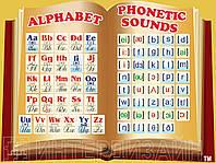 Учебный плакат Английский алфавит с транскрипцией