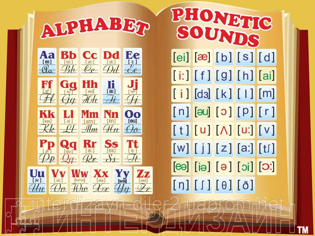 Учебный плакат Английский алфавит с транскрипцией: продажа ...