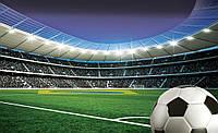Fußball dortmund monaco