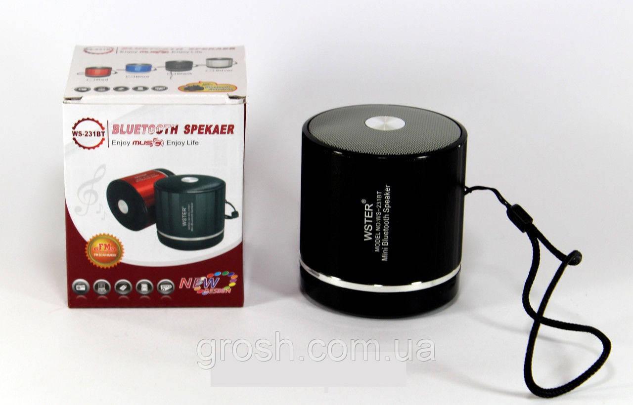 Портативная Bluetooth колонка WS-231