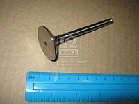 Клапан впускной IN SEAT/VW 1.4/1.6 AKV/AEE/AEK (пр-во KS), 39530