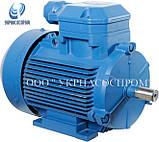 Электродвигатель 4ВР80В6 1,1 Квт 1000 об/мин взрывозащищённый, фото 2