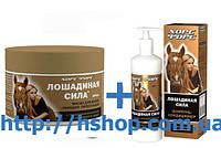 «Лошадиная сила» Хорс Форс Маска для волос + Шампунь-кондиционер 500 мл