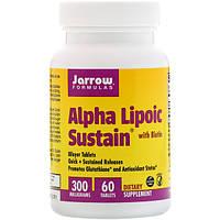 Альфа-липоевая кислота с биотином, Jarrow Formulas, 300 мг, 60