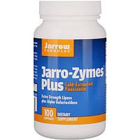 Энзимы, Панкреатин, Jarrow Formulas, 100 капсул