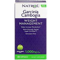 Гарцинія камбоджійська екстра, 500 мг, 120 капсул, Natrol, Garcinia Cambogia