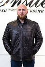 Зима Дубленка Мужская Черная Полоски 008ТДМ, фото 2