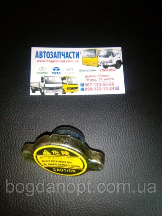 Крышка радиатора малая автобус Богдан а-091,а-092.