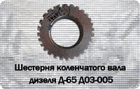 ЮМЗ Шестерня коленвала д65