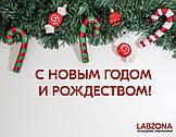 Поздравление с Новогодними праздниками!