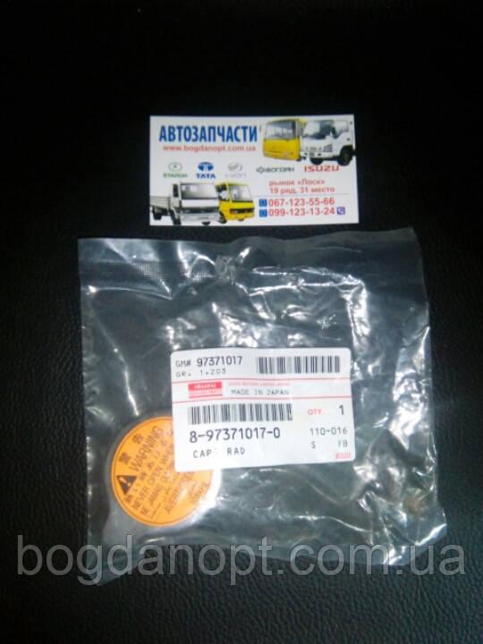 Крышка радиатора малая автобус Богдан а-091,а-092.    8973710170