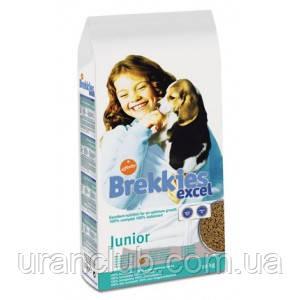 Brekkies (Брекис) Excel Junior 20 кг - корм для щенков с кальцием и витаминами
