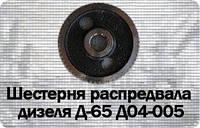 Шестерня распредвала Д04-005 (ЮМЗ, Д-65) z=56