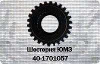Шестерня 2 передачи КПП ЮМЗ-6, Д-65 40-1701057