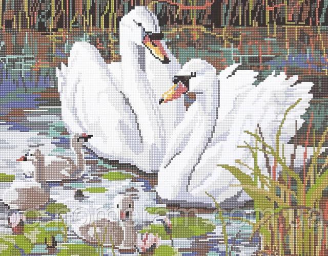 алмазная вышивка Пара лебедей