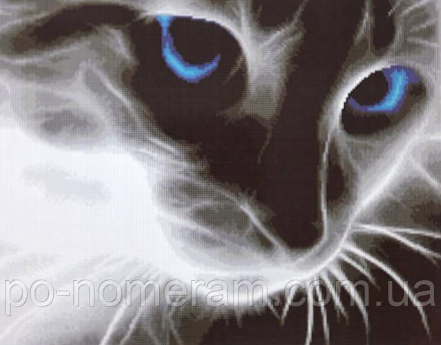 Алмазная вышивка черно-белый кот