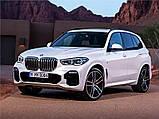 Автомобильные коврики BMW X5 (G05) 2018- Stingray, фото 10
