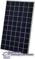 Сонячна батарея Risen RSM60-6-280P, 280 Вт, 5bb
