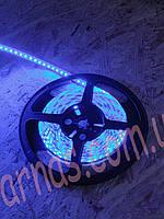 Светодиодная лента SMD 3528 (120 Led/метр) 12 вольт, цвет красный, синий