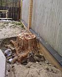 Спиливание деревьев в труднодоступных местах., фото 3
