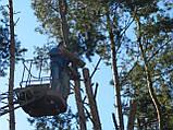 Спиливание деревьев с помощью оттяжки лебедкой, фото 7