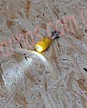 Фонарь-брелок Weiv LED key chain (W-2), фото 4