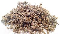 Полынь горькая трава 100 грамм (трава для абсента), фото 1