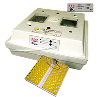 Инкубатор бытовой Лелека-3 (ИБМ-30ЕА) (автопереворот, эл.-цифр. терморегулятор Минилайн)