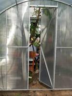 Коли поливати рослини у теплиці?