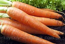 Морковь Витаминная-6 15г.Средняя.
