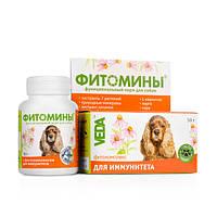 Фитомины Веда с фитокомплексом для иммунитета собак, 100 табл.