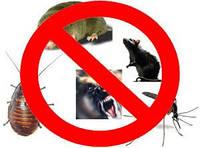 Товары для защиты от животных, птиц, насекомых