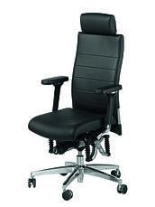 Офисное кресло BioSwing
