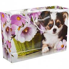 Пакет цветной большой «Крафт Цветы» горизонтальный 36×25×10 см  5006, фото 3