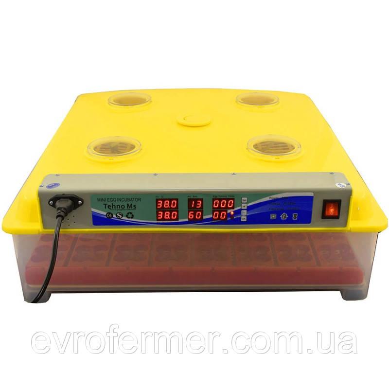 Бытовой автоматический инкубатор MS-63 для инкубации куриных, гусиных, перепелиных яиц