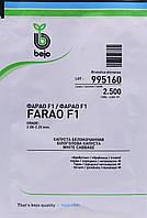 Капуста ФАРАО F1 Bejo 2500 шт