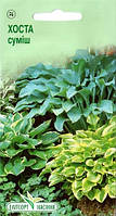 """Семена цветов Хоста гибридная смесь, многолетнее, 0,015,  """"Елітсортнасіння"""", Украина."""