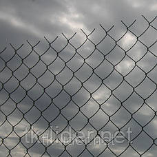 Сетка рабица, сетка рабица в рулонах, ячейка 30x30 мм, 10000x1000 мм,  д= 1.5 мм оц, фото 2
