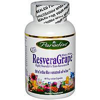 Ресвератрол (Resveratrol), РесвераГрап, Paradise Herbs,   500 мг, 60 капсул