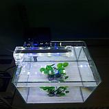 Світильник Xilong Crystal Led-D-10, 4w, фото 3